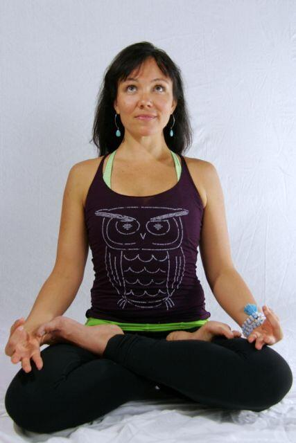 Our wise owl design screen printed on a ladies triblend racerback tank top in amethyst.